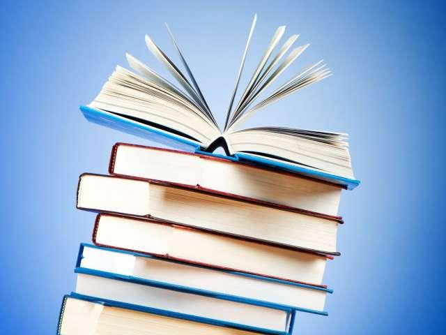 Biblioteket anbefaler & Slesvig i fokus